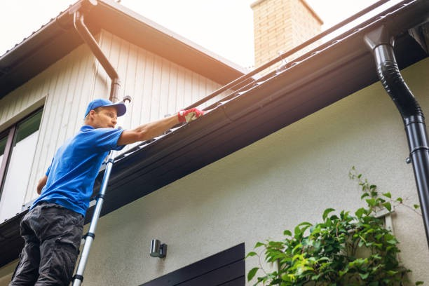 Gutter Cleaning Services – Why Do You Need the Help of Professionals?